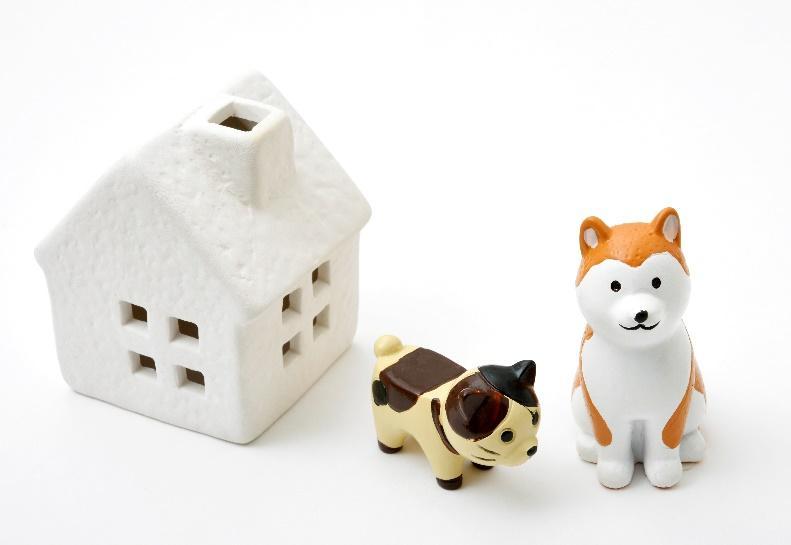 ペットと楽しく暮らす家に。ペットリフォーム・リノベーションの基本