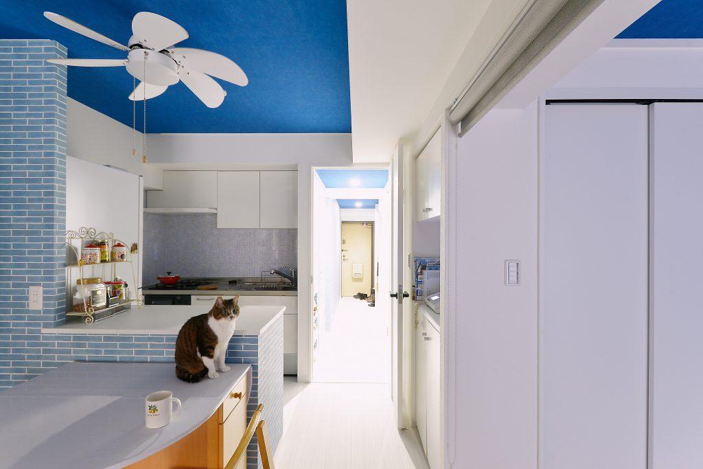 ダイニングキッチン:鮮やかな青のクロスを広範囲に使いましたが、それ以外のクロスや建具類、床色を白でまとめ、広さや明るさを感じるようにしています。